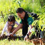ทส. ชวนประชาชน ทั่วประเทศ ร่วมดูแลบำรุงต้นไม้เนื่องในวันรักต้นไม้ประจำปีของชาติ ปี 2564